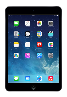 Apple - iPad mini Retina 16Go GRIS